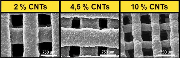 CNT, nanotubi al carbonio in PCL
