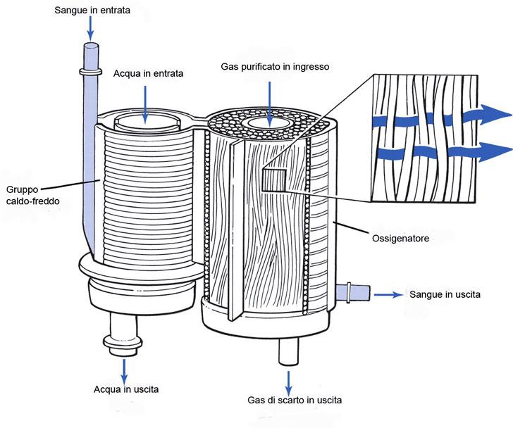 Ossigenatore