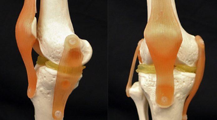 Cartilagine 3D: idrogel e nanoparticelle di argilla