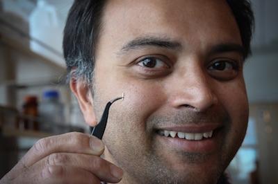 Il Professor Rajesh Menon mostra la cannula utilizzata