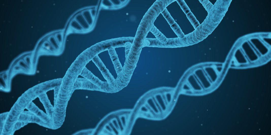 DNA in 3D: uno studio italiano pone le basi per ricostruirne l'architettura