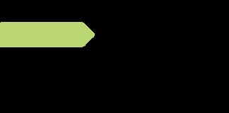 Logo NECSTLab